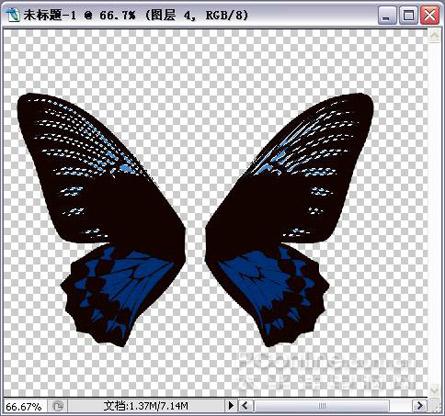 用PS鼠绘美丽的蝴蝶海报教程