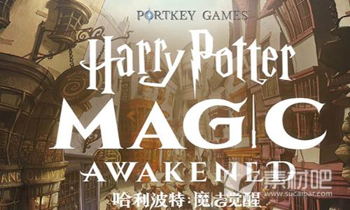 哈利波特魔法觉醒魔杖哪个好