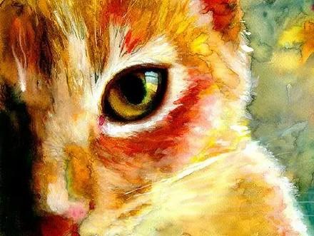 超可爱小猫咪手绘图片