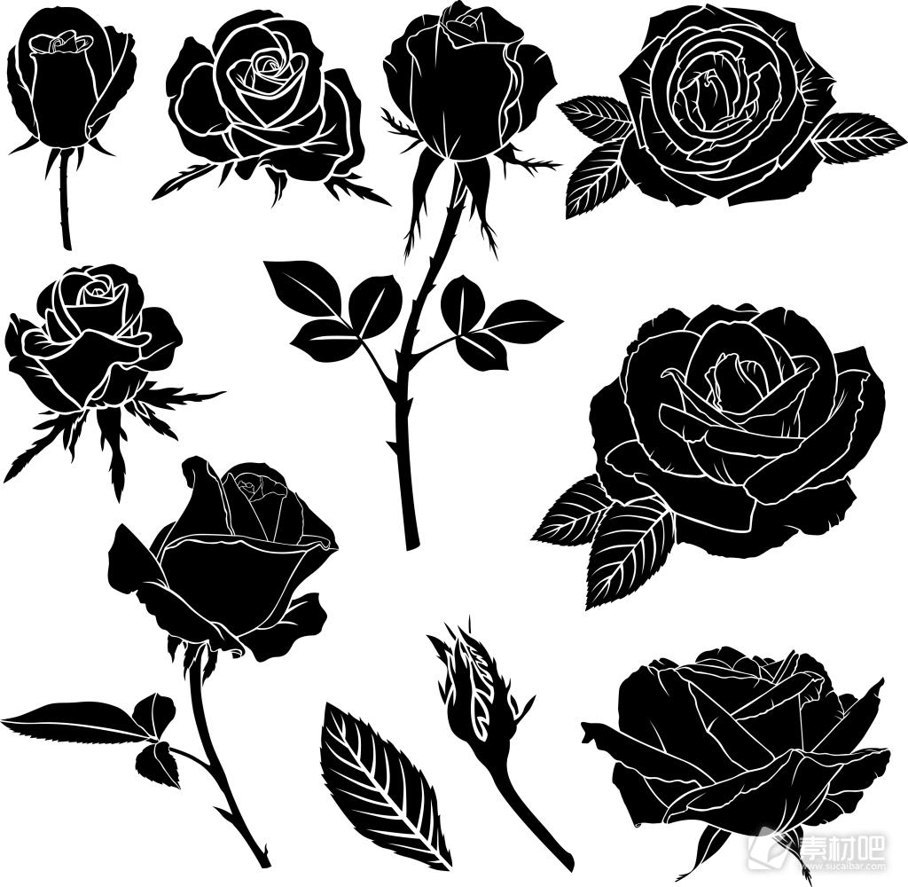黑白时尚剪影玫瑰花植物