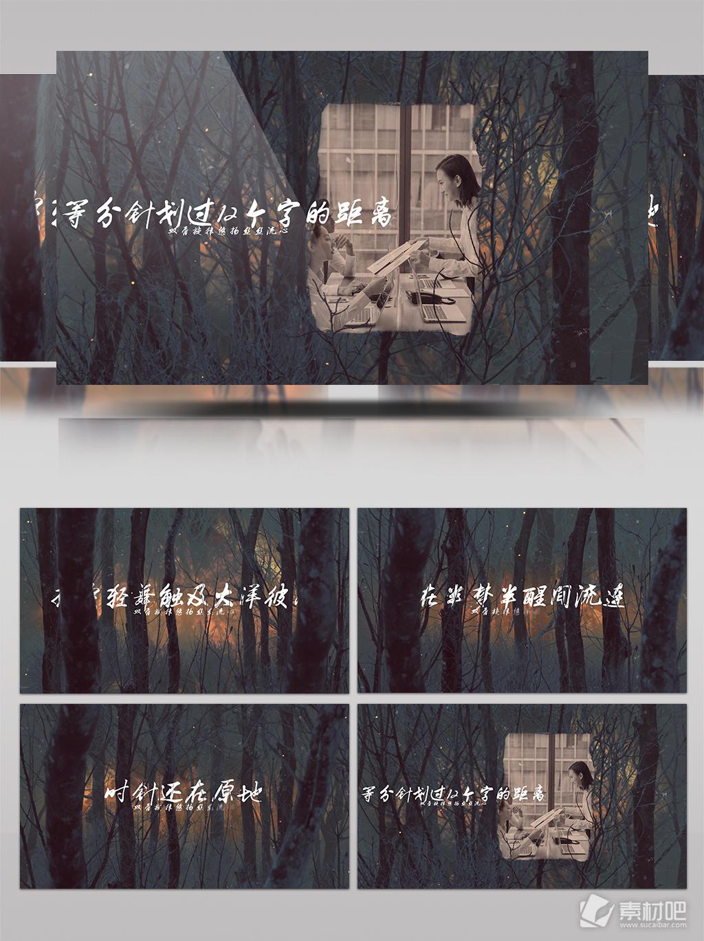 森林中的浪漫爱情婚庆照片展示
